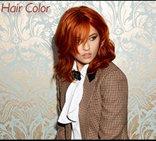 Style Salon Hair Color